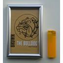 Billede 10 x 15 cm. The Bulldog.